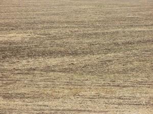 rivalutazione-terreni-2013-online-300x225